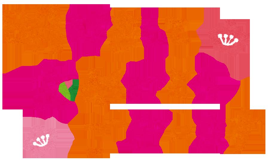 gashi_akemashite